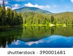 landscape near the lake among conifer forest in mountains in the early summer morning  - stock photo