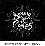 vector typographical lettering... | Shutterstock .eps vector #390010279