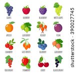 set of berries icons. isolated... | Shutterstock .eps vector #390027745