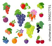 set of berries icons. isolated... | Shutterstock .eps vector #390027751
