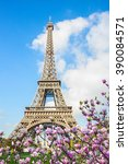 Eiffel Tower  And Blooming...