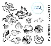 set of black sketch seashell.... | Shutterstock .eps vector #390255655