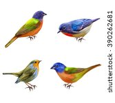 set. the bright little birds.... | Shutterstock . vector #390262681