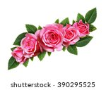 pink rose flowers wave... | Shutterstock . vector #390295525