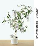 One hundred dollar bills growing on tree - stock photo