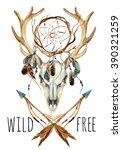 Deer Skull. Animal Skull With...