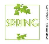 Spring. Spring Theme. Spring...
