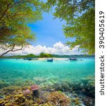 beautiful coral reef in the... | Shutterstock . vector #390405619