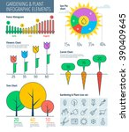 Infographic Elements. Gardenin...