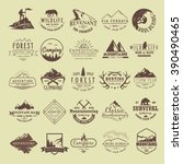 set of vintage labels on the... | Shutterstock . vector #390490465