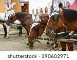 couple horse drawn carts... | Shutterstock . vector #390602971