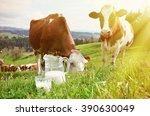 milk and cows. emmental region  ... | Shutterstock . vector #390630049