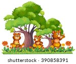 Three Little Bears In The...