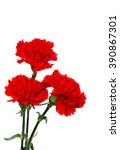 bouquet of red carnations ... | Shutterstock . vector #390867301