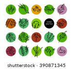 hand drawn vegetables sketch.... | Shutterstock . vector #390871345