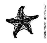 starfish sketch | Shutterstock .eps vector #390942667