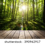 wood floor on the backgrounds... | Shutterstock . vector #390962917