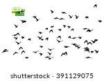 flying birds in the sky. vector   Shutterstock .eps vector #391129075