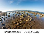 overgrown with algae rocky... | Shutterstock . vector #391150609
