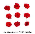 Stock photo rose buds on wooden background 391214824