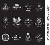 car service logos templates set.... | Shutterstock .eps vector #391221394