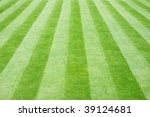 Perfectly Striped Freshly Mowed ...