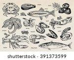 seafood menu  octopus  mussels  ... | Shutterstock .eps vector #391373599