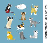 Stock vector the kittens of various patterns 391424491