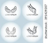 wings vector set. illustration... | Shutterstock .eps vector #391429207