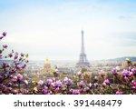 Skyline Of Paris City Roofs...