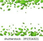white background with fresh... | Shutterstock .eps vector #391516321