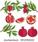 pomegranate. set of... | Shutterstock .eps vector #391590331