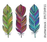 colorful hand drawn feather... | Shutterstock .eps vector #391724911
