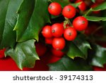 Real Holly Berries And Leaves...