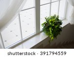 lots of small plant pot on the... | Shutterstock . vector #391794559