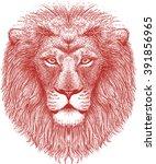 Calm Lion Head