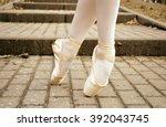 ballerina. ballet dancers