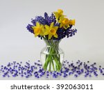 Spring Bouquet Of Daffodils An...