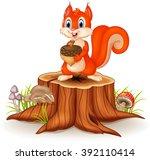Cartoon Funny Squirrel Holding...