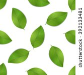 green seamless leaves isolated...   Shutterstock .eps vector #392133481