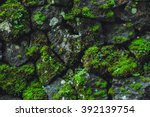 Stone Wall With Greenery....
