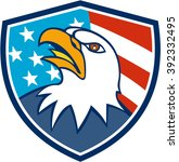 illustration of an american...   Shutterstock . vector #392332495