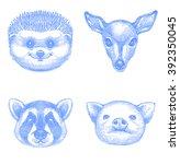 hedgehog  buck  racoon  piggy | Shutterstock .eps vector #392350045