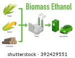 biomass ethanol  made form... | Shutterstock .eps vector #392429551