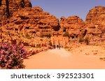 Ancient Ruins In Petra  Rose...