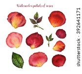 watercolor floral set of petal... | Shutterstock . vector #392641171