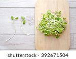 sunflower sprouts in the plate... | Shutterstock . vector #392671504