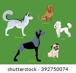 illustration of dogs breed... | Shutterstock .eps vector #392750074