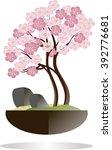 bonsai. blooming sakura tree in ...   Shutterstock .eps vector #392776681