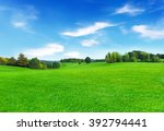 sunny meadow and blue sky | Shutterstock . vector #392794441
